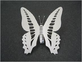 飛ばない蝶